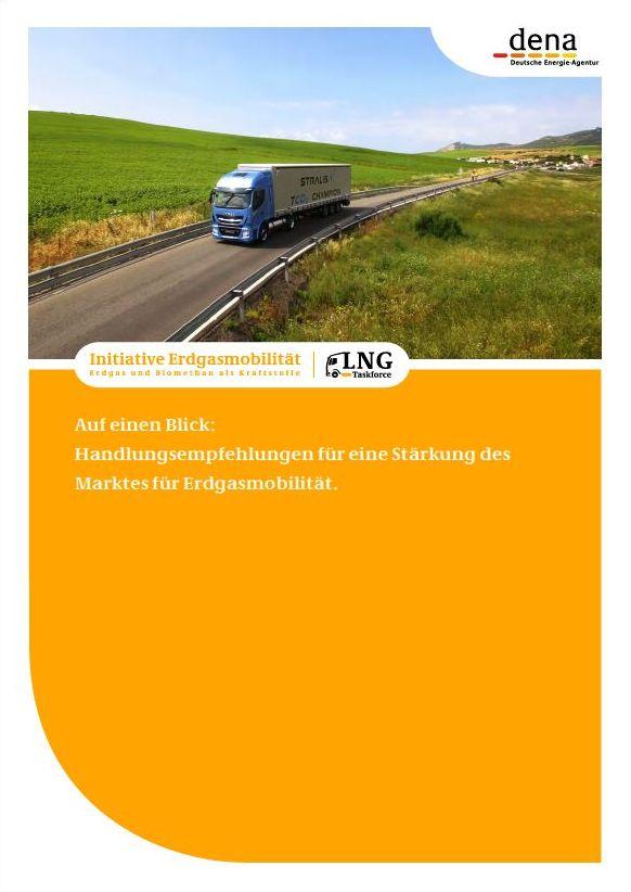 dena - Initiative Erdgasmobilität LNG Taskforce