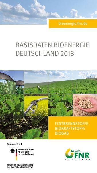 Basisdaten Bioenergie Deutschland 2018