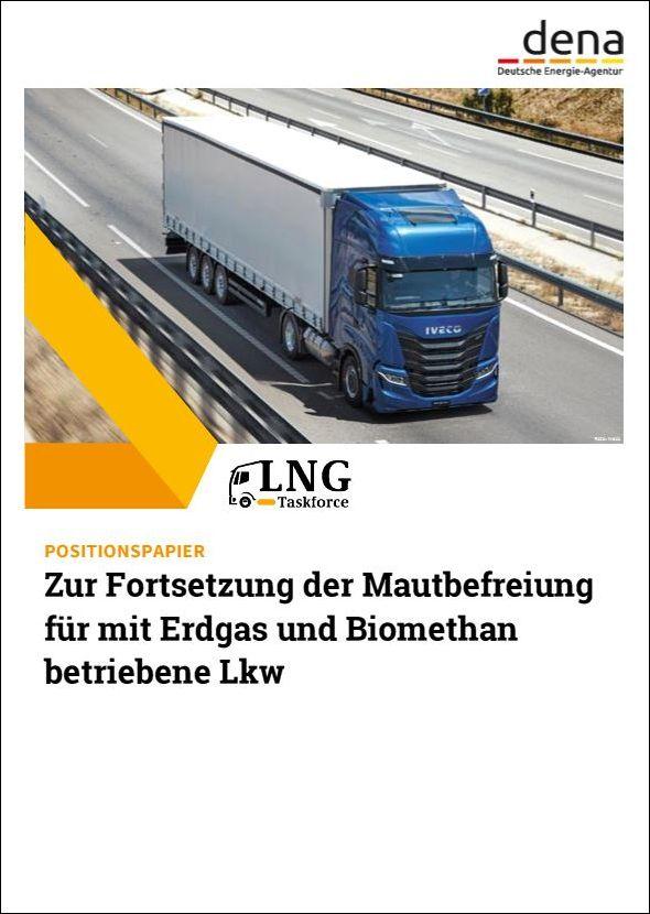 dena: Positionspapier der LNG-Taskforce