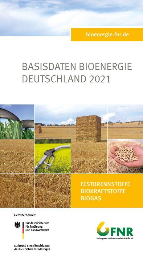 Basisdaten Bioenergie Deutschland 2021